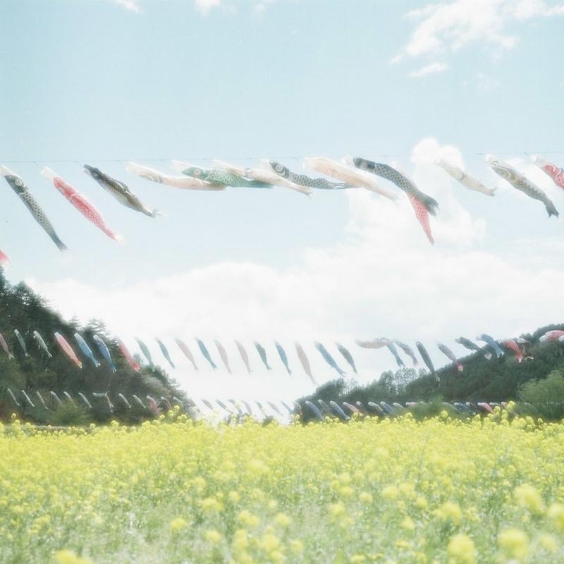 胶片、花和女子-菲林中文-独立胶片摄影门户!