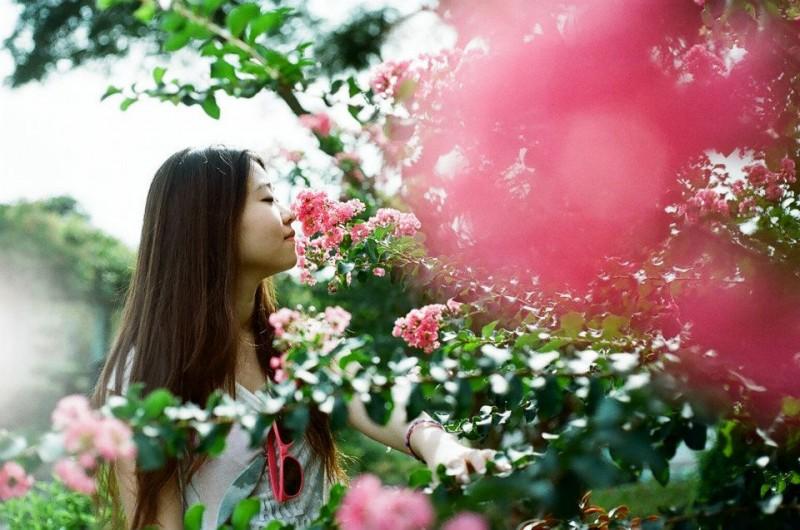 夏天,花,女孩-菲林中文-独立胶片摄影门户!