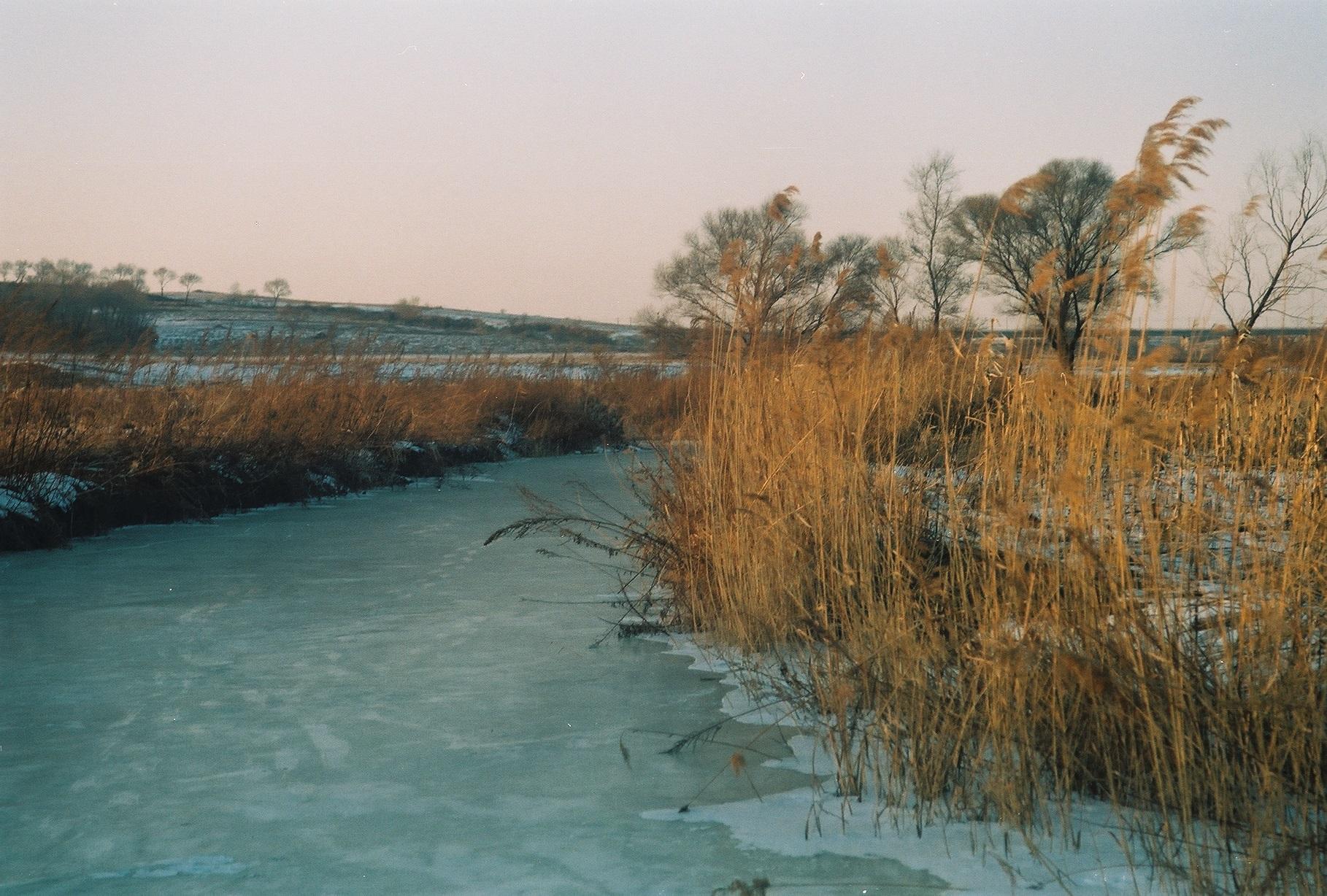 家在北极村-菲林中文-独立胶片摄影门户!