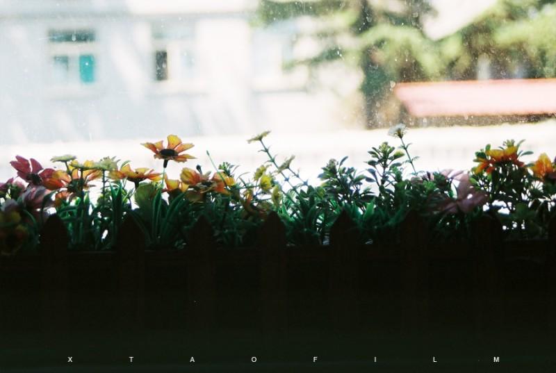 我生活的城市-菲林中文-独立胶片摄影门户!