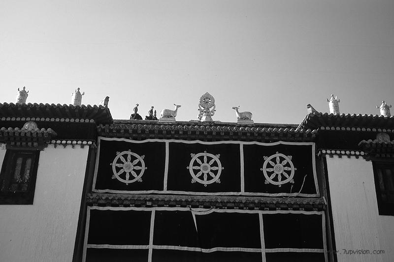 我的甘南(135黑白篇)@醒目武汉-菲林中文-独立胶片摄影门户!