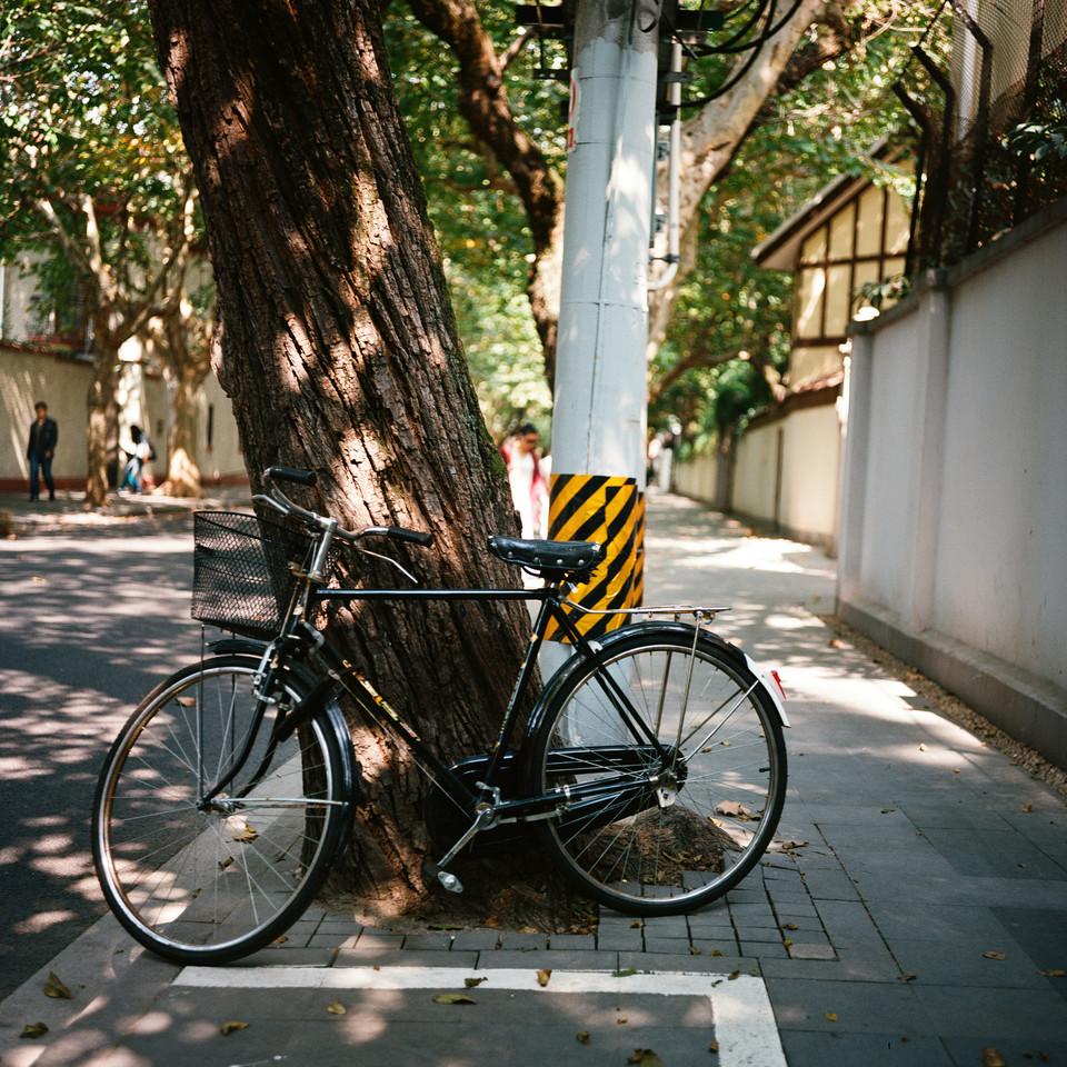 上海之秋 @judge1026-菲林中文-独立胶片摄影门户!