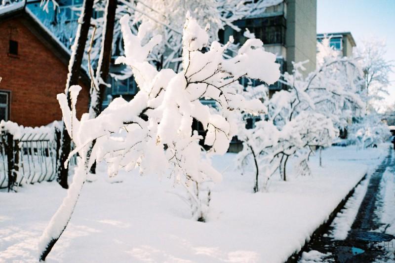 北京大雪-菲林中文-独立胶片摄影门户!