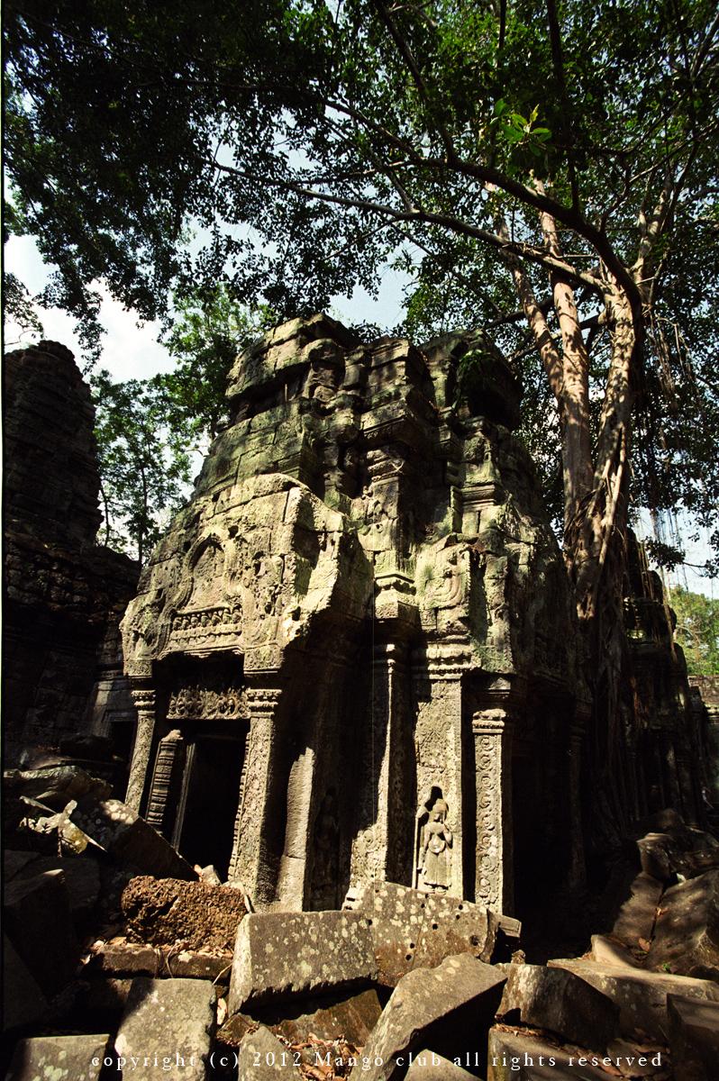 柬埔寨菲林1-菲林中文-独立胶片摄影门户!