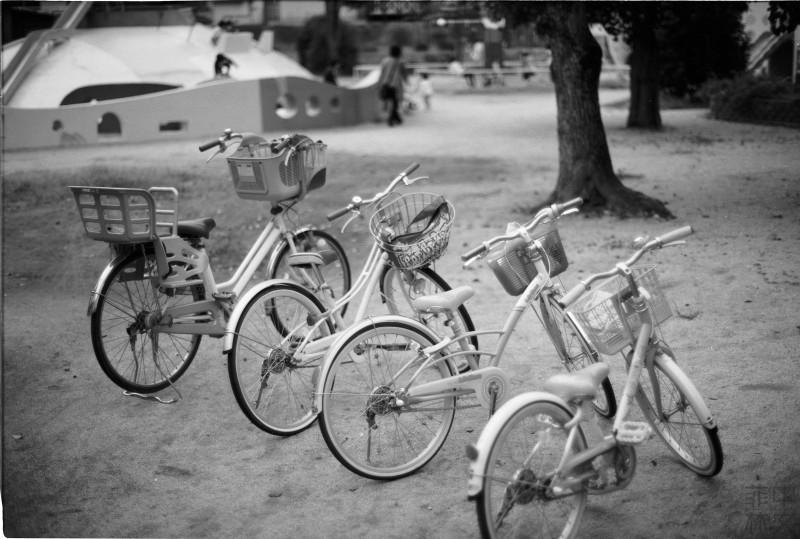 Acros 100 的一些样片-菲林中文-独立胶片摄影门户!
