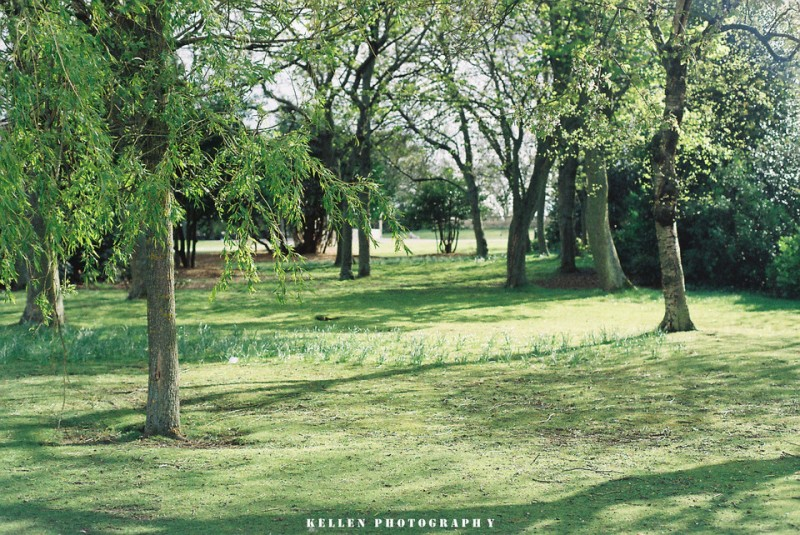 菲林英國-公園-菲林中文-独立胶片摄影门户!