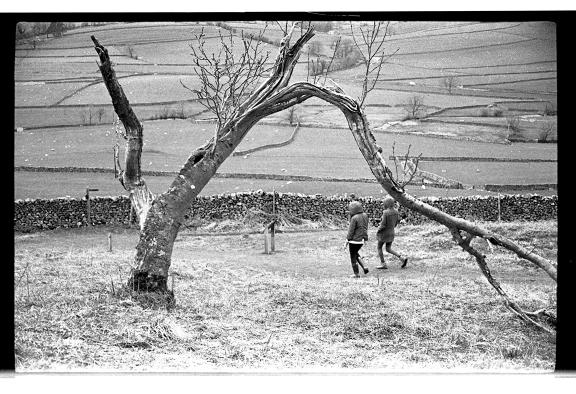 宁静、锐利闪亮的Yashica Electro 35-菲林中文-独立胶片摄影门户!