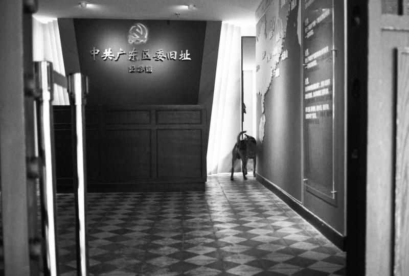 广州香港 胶片乱摄@青山帮主_爱倒饭-菲林中文-独立胶片摄影门户!
