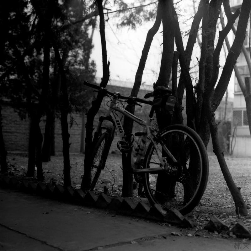 记录生活-菲林中文-独立胶片摄影门户!