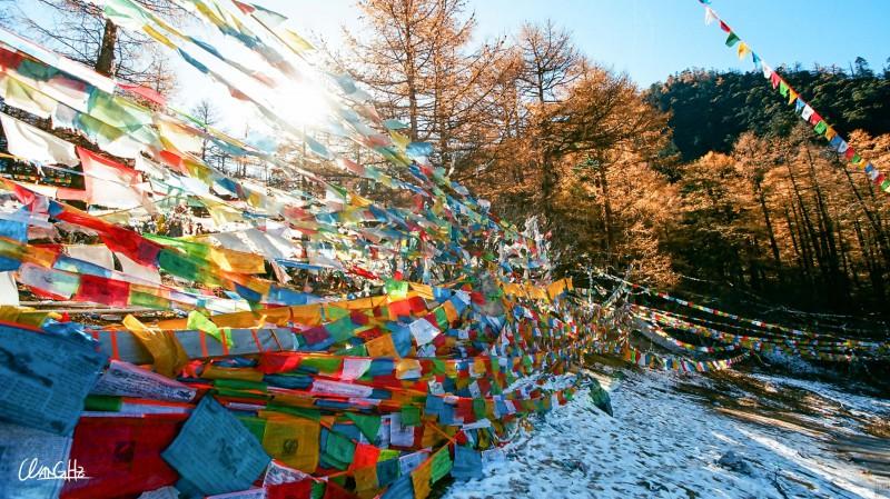 乐于途中 醉于雪山-菲林中文-独立胶片摄影门户!