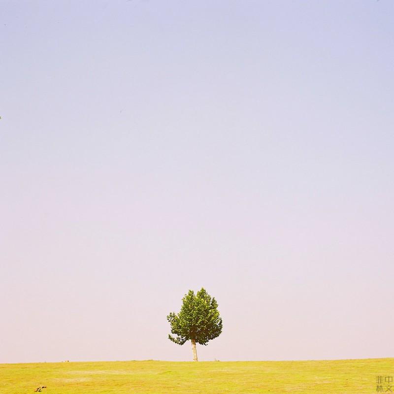 一个人的风景-菲林中文-独立胶片摄影门户!