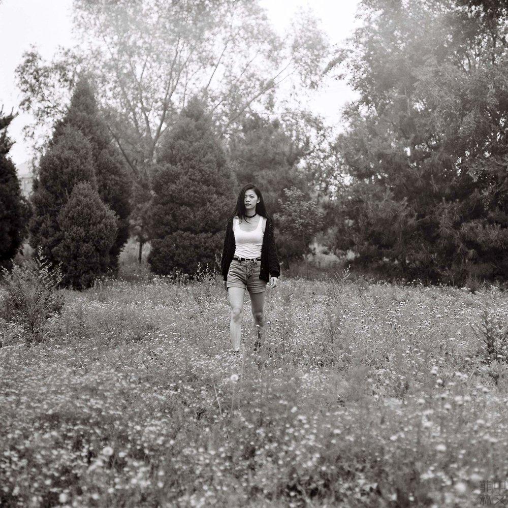 黑白畫映 @xtaofilm-菲林中文-独立胶片摄影门户!