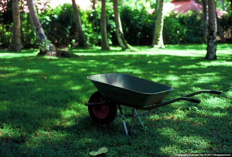 回到那个夏天 之二-菲林中文-独立胶片摄影门户!
