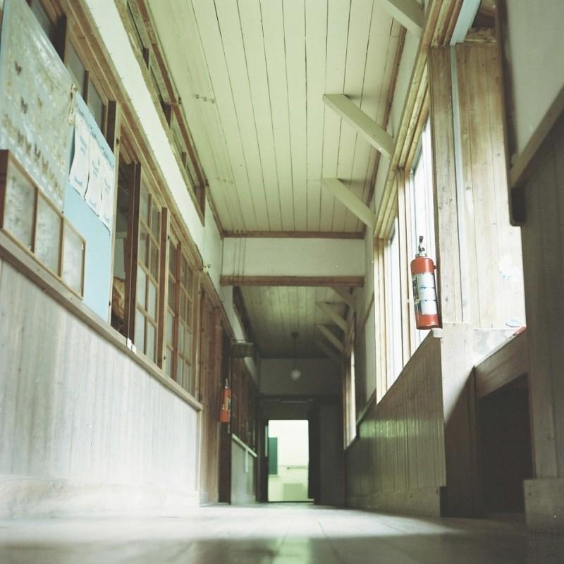 再回到校园-菲林中文-独立胶片摄影门户!