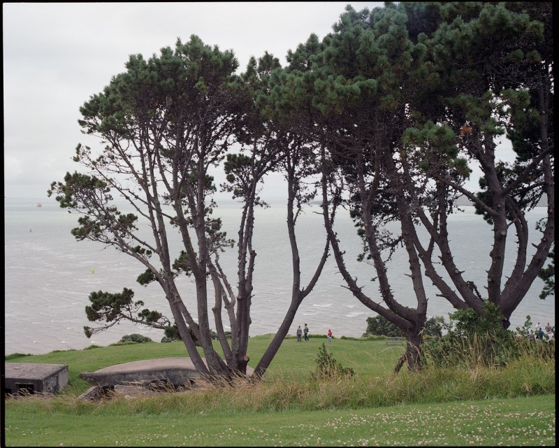 新西兰 北岛孤独-菲林中文-独立胶片摄影门户!