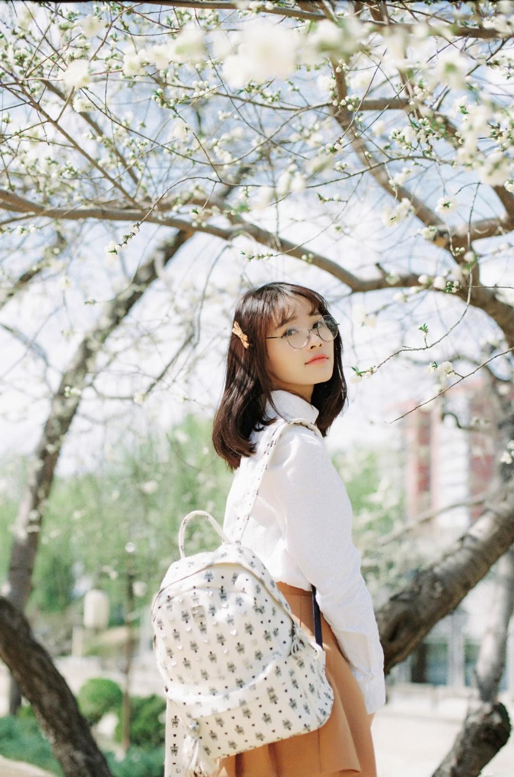樱之旅 @马骏同学-菲林中文-独立胶片摄影门户!