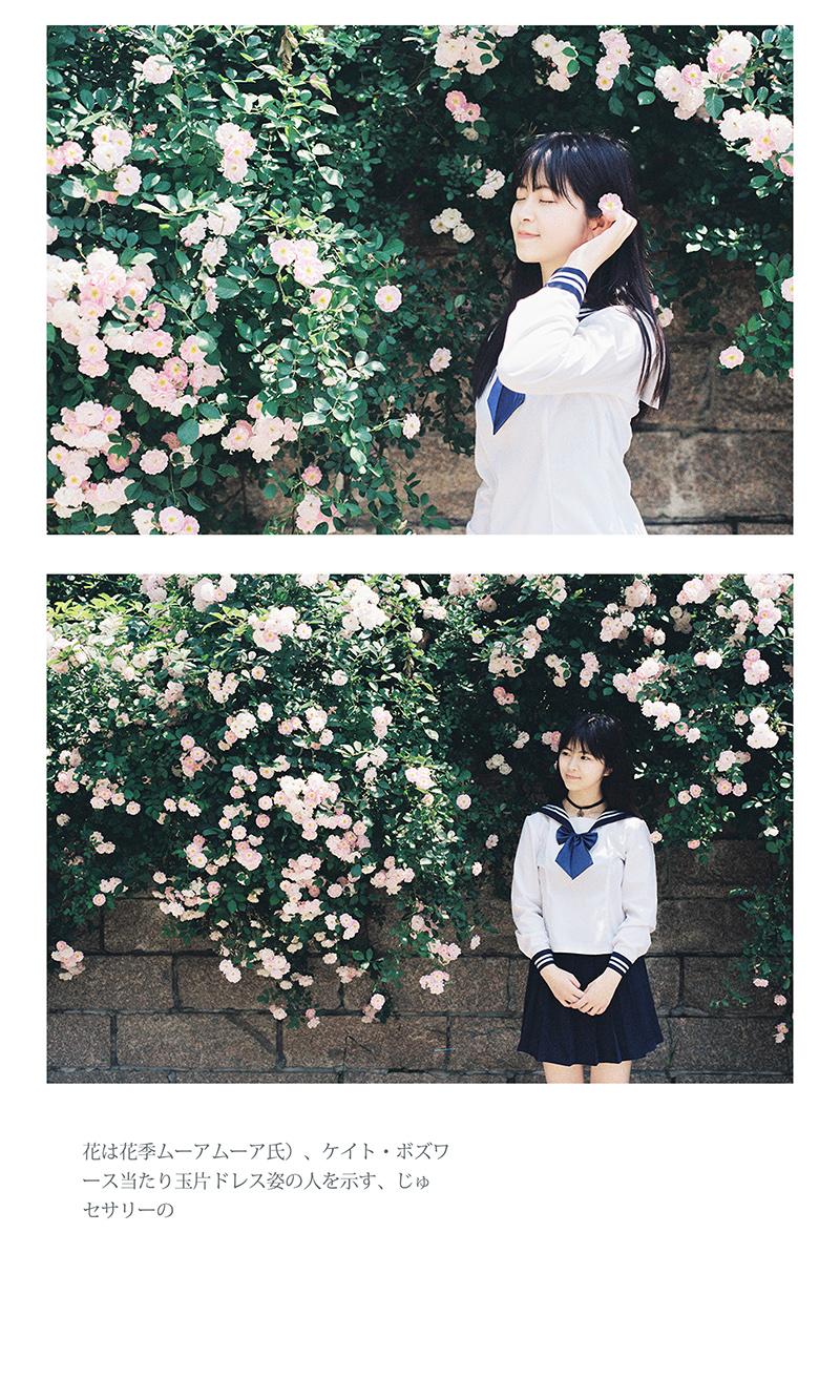 蔷薇花开@乔木Leon-菲林中文-独立胶片摄影门户!