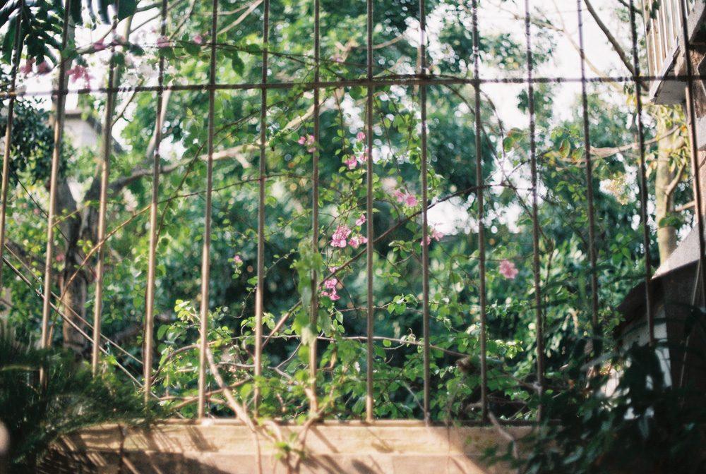 """名为""""生活""""的庞然巨物 @时雨whisper-菲林中文-独立胶片摄影门户!"""