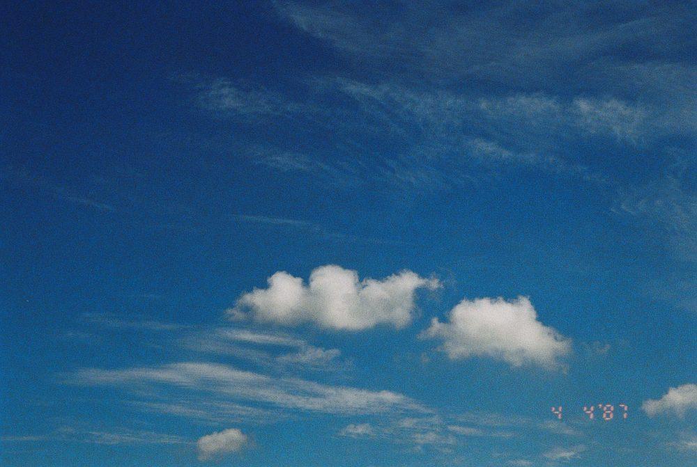 炎炎夏日 第一次拍摄胶卷 @学生导演-王晓鹏-菲林中文-独立胶片摄影门户!