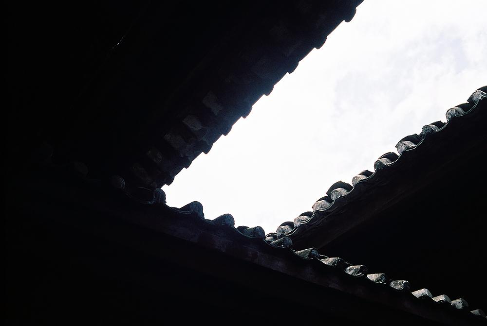 校园与出行随拍 @繁花灬血影-菲林中文-独立胶片摄影门户!