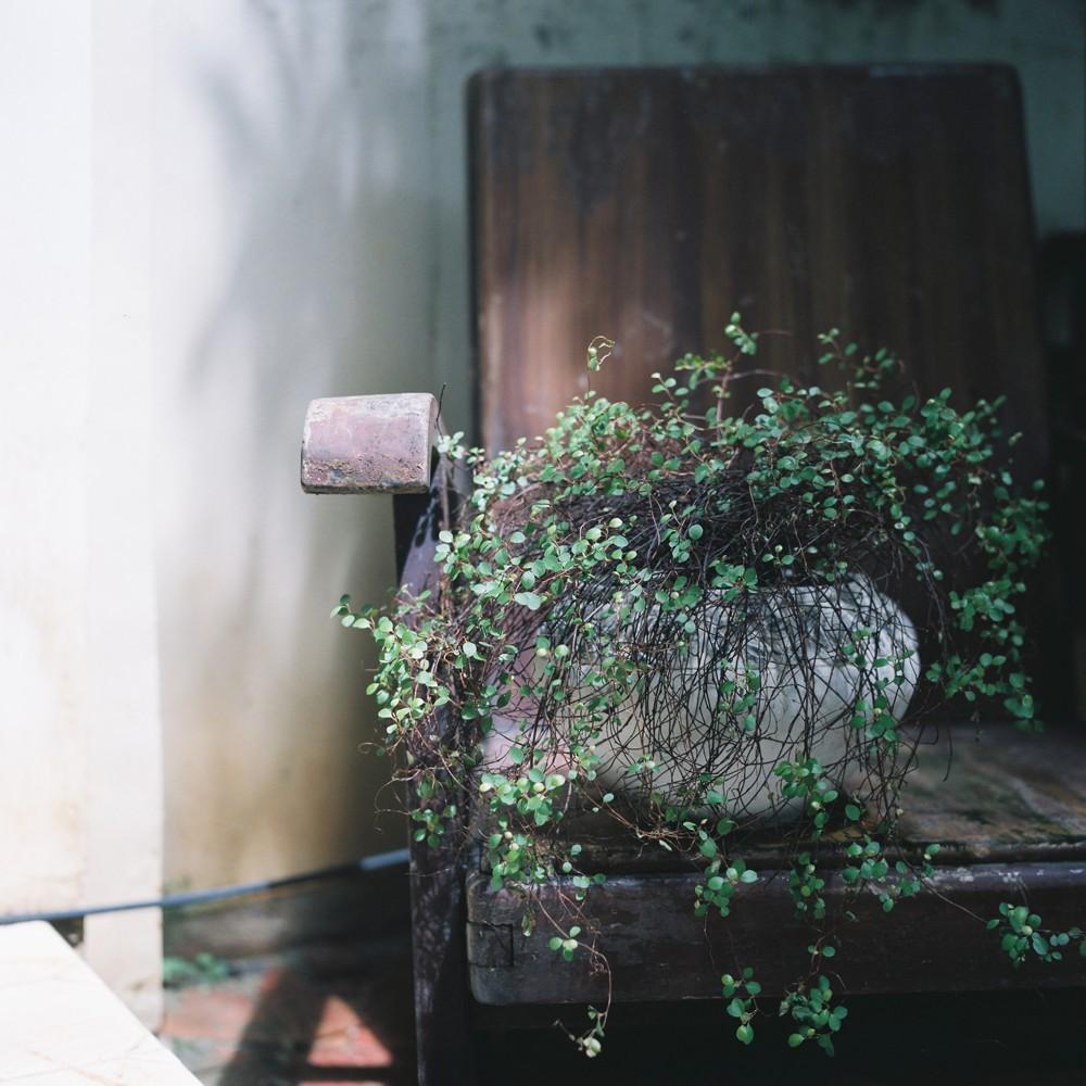 银盐上的纸时代-菲林中文-独立胶片摄影门户!