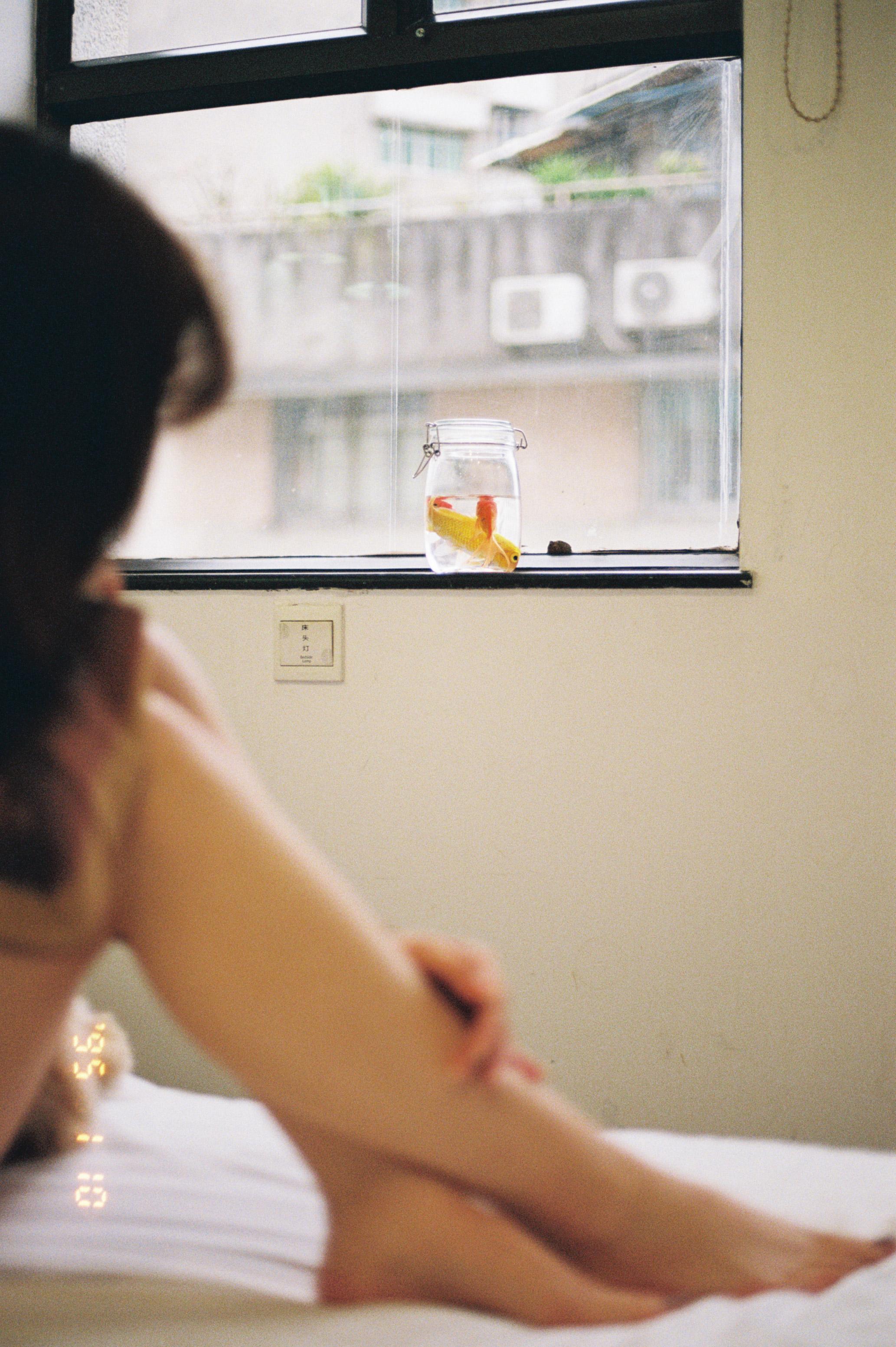 房號1018-菲林中文-独立胶片摄影门户!