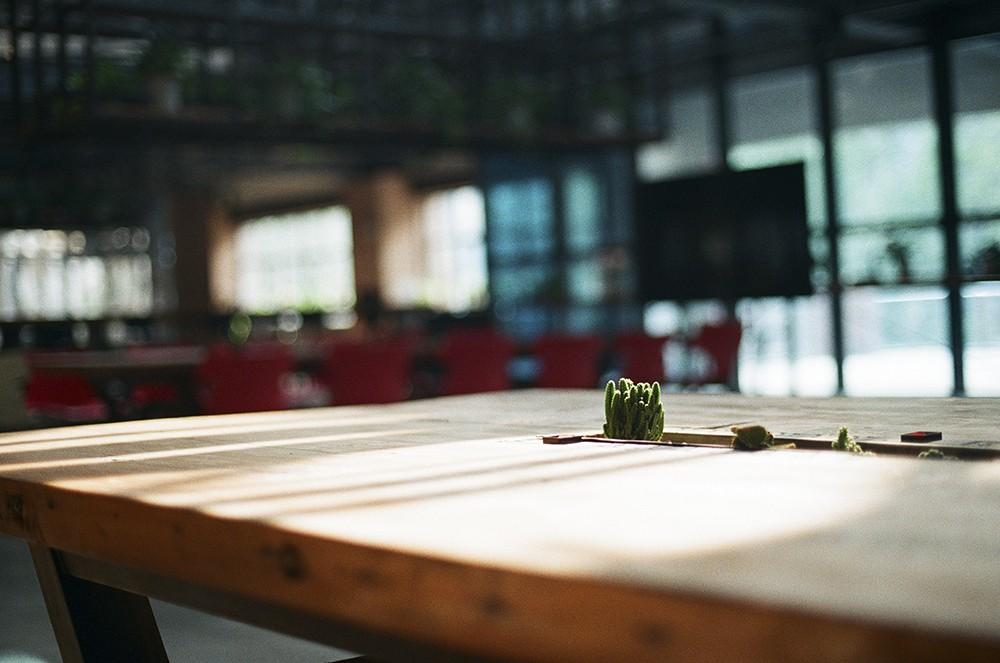 游走在一米阳光中-菲林中文-独立胶片摄影门户!
