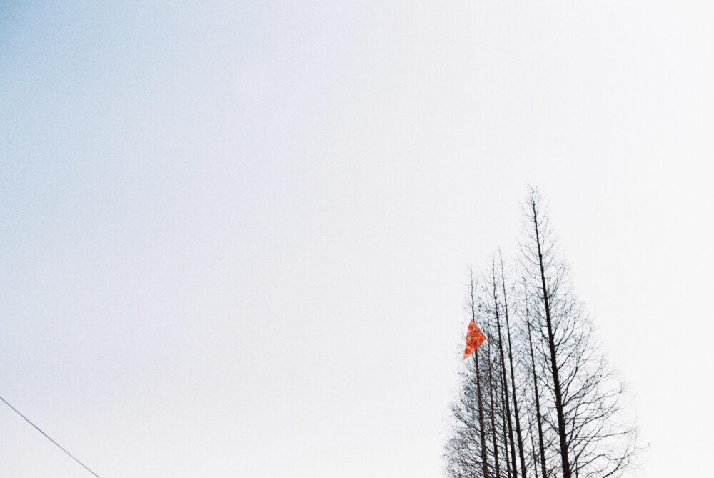 苏州老街,@叶臾-菲林中文-独立胶片摄影门户!